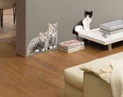 Decorazioni adesive Gatti