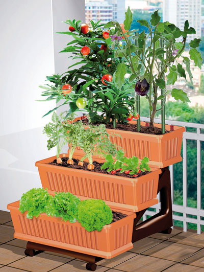 Giardino e arredo giardino e fioriere e vasi proposte for Piante da orto vendita online